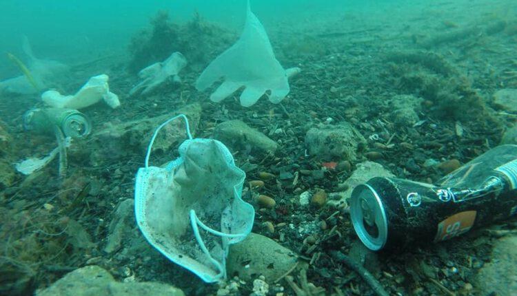 Më shumë maska e doreza në oqeane dhe dete se sa në tokë!